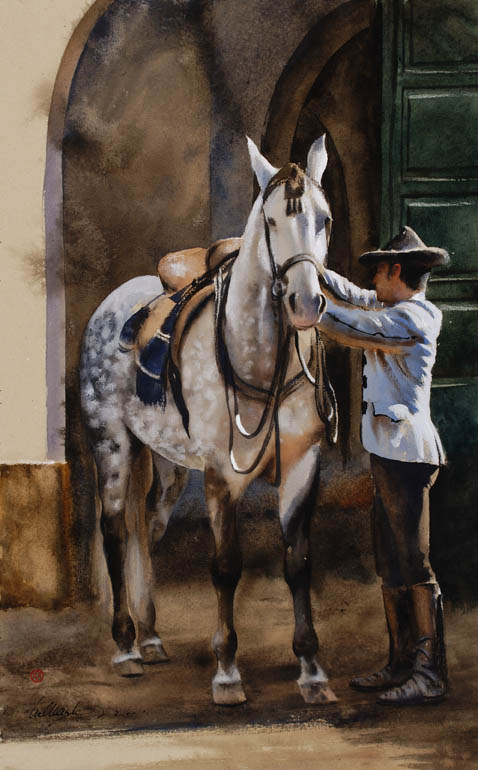 Andalusian Stallion